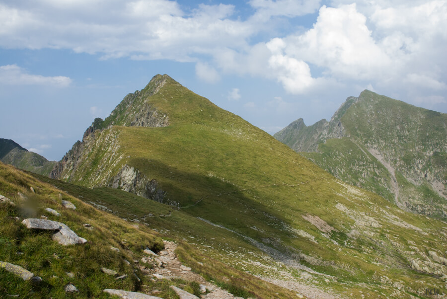 Vf. Galbenele (2456 m)
