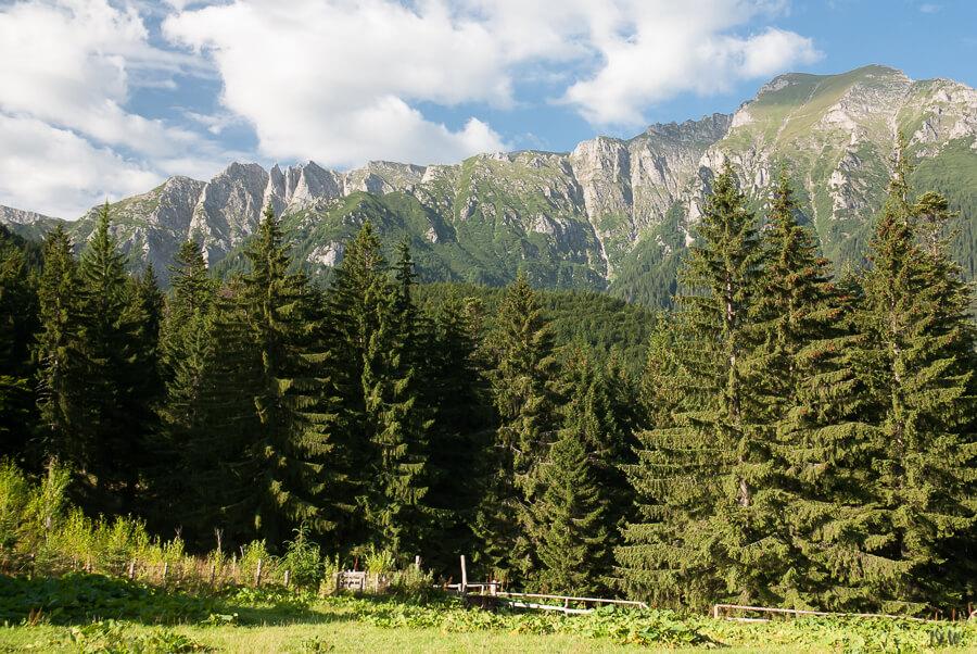Coltii Morarului + Bucsoiu, Bucegi