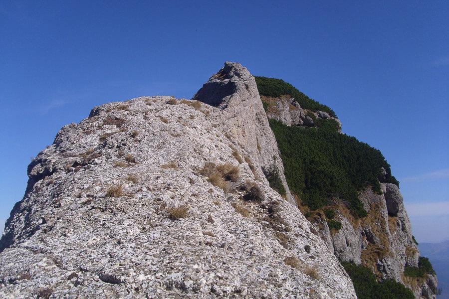 Colțul Gălbinele, Bucegi