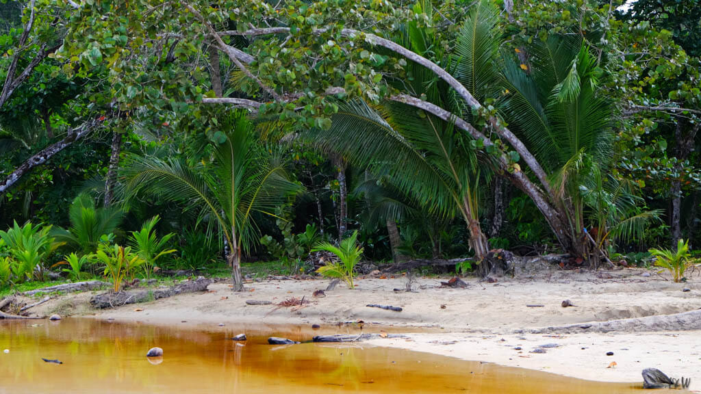 Red Frog Beach, Bocas del Torro