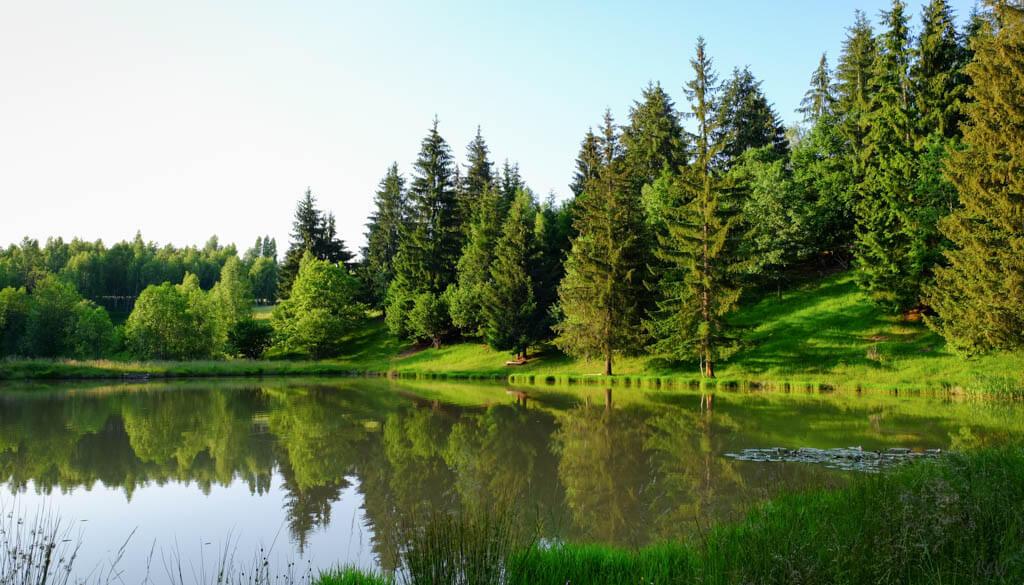 Yvo Wildlife Park