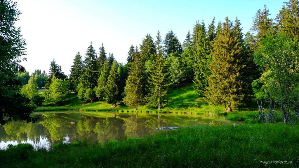 Ivo Wildlife Park, Izvoare, Harghita